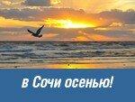 ORENAIR открыла продажу авиабилетов на рейсы в Сочи в сентябре